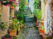 Provence fleur