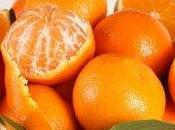 Succo d'arancia, alleato naturale della memoria