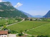 Cicloturismo Trentino: alla scoperta Rovereto della Vallagarina bici