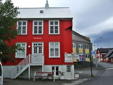 Reykjavik City_luogolungo