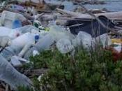 """Beach litter"", Legambiente: regina indiscussa rifiuti nelle spiagge italiane plastica"