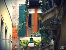 cose sapere prima venire Venezia