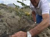 Ecuador: record mondo riforestazione