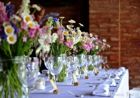 Fiori di campo e fiori da giardino paperblog for Fiori grassi da giardino