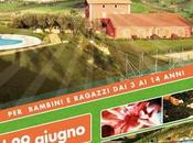 Nature Camp: centro estivo proposte alta qualità Elpidio Mare (Fm)