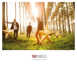 the panicles COVER_universe2