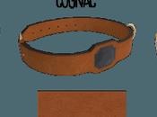 DogsSense: cani sani tutta vita semplice wearable