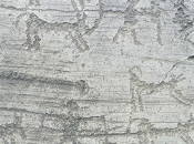 Archeologia. incisioni rupestri della Camonica