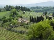 Toscana senza glutine, camper Siena Pisa: Part