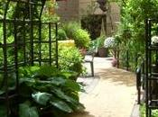 Healing garden: natura aiuta guarire