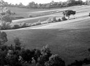 Ardengo Soffici, Campagna Toscana Poggio Caiano