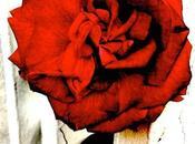 """""""Rosarium"""": progetto fotografico Silvia Castellani"""