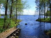 Finlandia paesaggi: verde natura circonda lago Saimaa