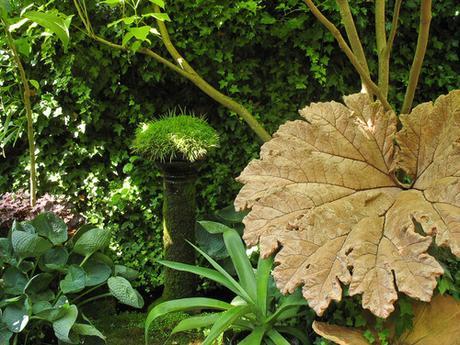 Giardini in ombra su houzz paperblog - Piante giardino ombra ...