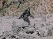 Yowie Wakki, l'Uomo-Scimmia australiano