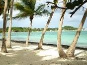 luna miele perfetta? scegli crociera caraibi