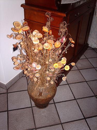 Da contenitori a vasi da fiori, l'evoluzione estetica della terracotta