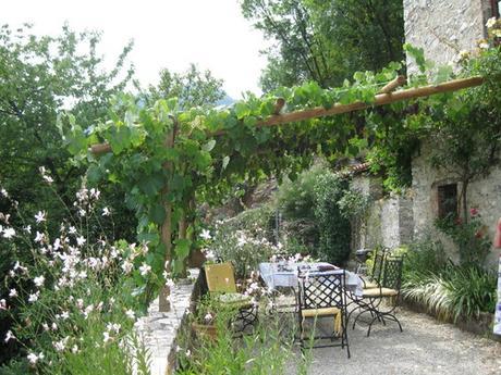 Il giardino in estate pergolati e piante rampicanti su houzz paperblog - Il giardino d estate ...