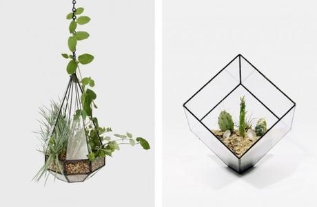 DESIGN: Score + Solder  Terrari e lampade in vetro - Paperblog