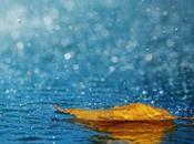 Listen rain