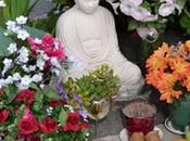Buddha Oakland Teoria delle Finestre Rotte