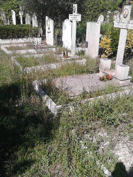 Le strazianti condizioni del cimitero di prima porta - Cimitero flaminio prima porta ...
