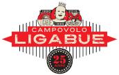 """LIGABUE: """"CAMPOVOLO FESTA 2015"""", sabato settembre Campovolo Reggio Emilia! Venerdì """"ASPETTANDO CAMPOVOLO""""."""
