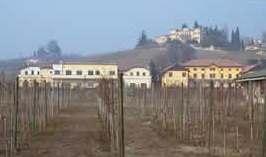 A Cantine Aperte partecipa anche il Centro per la Viticoltura, l'Enologia e la Grappa di Conegliano (Tv)
