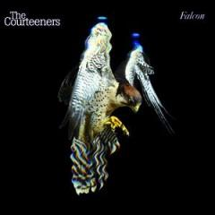 the courteeners falcon.jpg