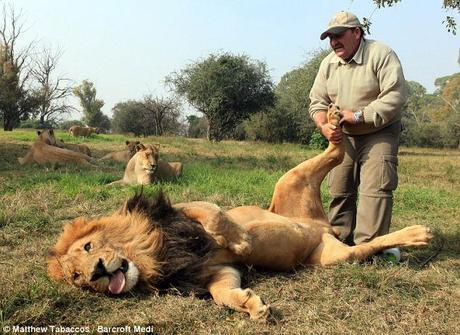 sesso massaggio Johannesburgsquirting Cam ragazze