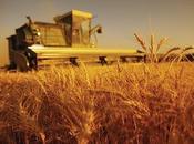 Contro logica meccanicistica riduzionistica della politica agricola