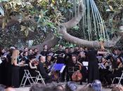 Autunno Bach bambini Cagliari