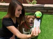 Come fare selfie perfetto cucciolo
