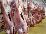 carne rossa dannosa salute?
