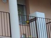 morto Giuseppe Focarete, casa Aler viene ancora usata notte