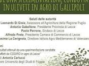 Risultati preliminari sperimentazione condotta uliveti agro Gallipoli (Lecce)