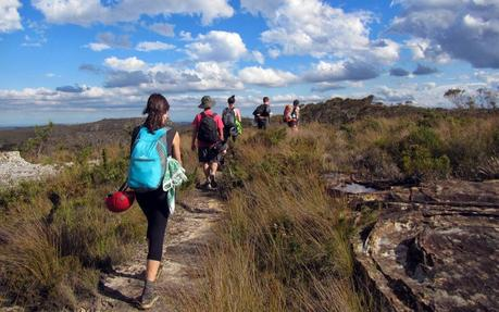 Bushwalking (Photo credit: Bushwalking Org NSW)