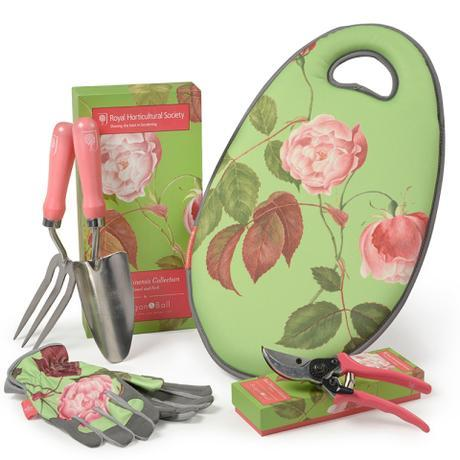 rosa-chinensis-collection_B&B. jpg