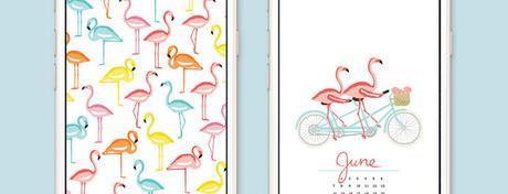 Freebies: ovvero dove scaricare calendari e altre cose belle per la nostra scrivania