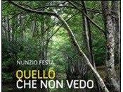 Quello vedo Nunzio Festa (Altrimedia edizioni)