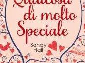 Recensione: Qualcosa molto speciale Sandy Hall