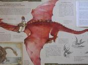 Libri draghi disegni copiare