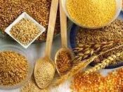 Cereali: potenza Chicco