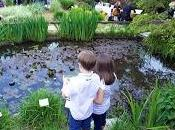 pic-nic all'Orto botanico