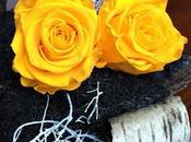 #fioridivenerdì- -una culla betulla boccioli rose