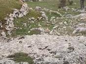complesso della valle dolmen Monte Sant'Angelo mostra nuovi elementi interessanti approfondire