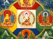 Cinque Buddha