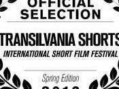 """""""Dignity"""" competizione Transilvania Shorts!"""