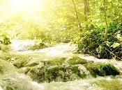 [Poesia] Fiume Scorre (tratto brano River Flows Yiruma)