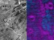 """grande """"morso"""" sulla superficie Plutone potrebbe indicare processi sublimazione atto"""